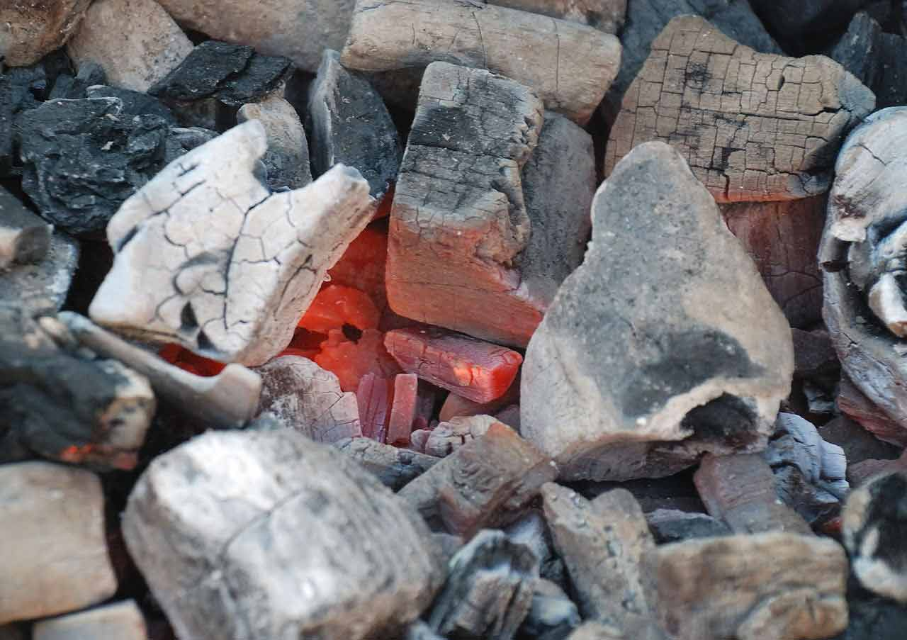 meilleur charbon bois