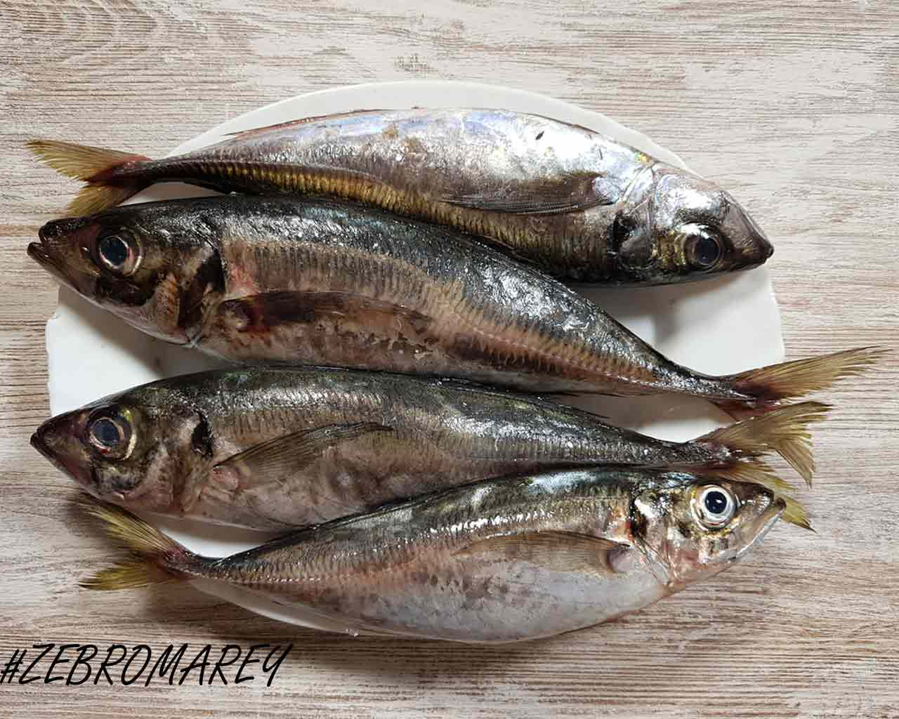chinchard-poisson barbecue